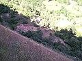 Kaymakların Çayırından Deredekiler - panoramio.jpg