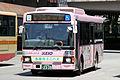 KeioBusMinami J21059 TamaCity-Minibus.jpg