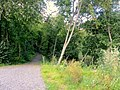 Kerhokadun puoleinen puistotien alku,kohti Rotaripuistoa - panoramio.jpg