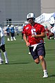 Kerry Collins at Titans training camp, 2008.jpg