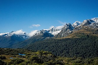 Environment of New Zealand - Vegetation change with elevation.