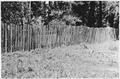 Kid or Goat Fence, Davis Bros. Ranch, Ashland, Oregon, Crater Forest, 1917. - NARA - 299148.tif