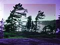 Killbear Provincial Park.jpg