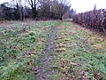 Kirby Frith Nature Reserve 3.jpg