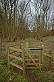 Kissing gate at entrance to Low Hunsley Plantation - geograph.org.uk - 702120.jpg