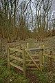 Kissing gate at entrance to Low Hunsley Plantation - geograph.org.uk - 702120.jpg