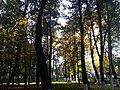Kolomna, Moscow Oblast, Russia - panoramio (22).jpg