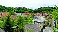 Koronowo - panoramio (50).jpg