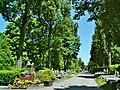 Krakow Military Cemetery,main alley,1 Prandoty street,Krakow,Poland.JPG