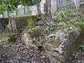 Kremenets Mountains, Jewish cemetery, 04.05.2017 05.jpg