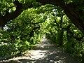 Kromeriz - Kvetna zahrada ulicka.JPG
