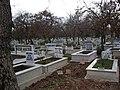 Kurtköy Mezarlığı - panoramio.jpg