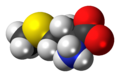 L-Methionine zwitterion spacefill.png