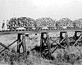 La Estancia Santa Ines de Núñez, cerca de Posadas, tuvo a este ferrocarril interno funcionando entre 1921 y 1952.jpg