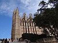 La Seu, 07001 Palma, Illes Balears, Spain - panoramio (21).jpg
