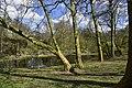La nature de ce parc exceptionnel (26037454180).jpg