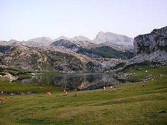 Picos de Europa National Park - Lago Ercina, one of the Lakes of Covadonga.