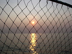 Sunset on Lake Erie seen through a fishing net.