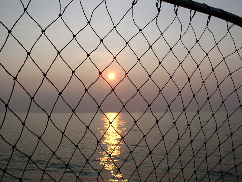 File:Lake Erie Sunset with fish net.JPG