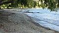 Lake Esplanade, Queenstown (482947) (9484835958).jpg