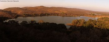 Lakes in Ranthambore.jpg