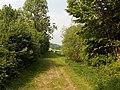 Landschaftsschutzgebiet Wäldchen bei Buer Melle Datei 30.jpg