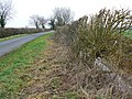 Lane, verge and ditch, near Marston Meysey - geograph.org.uk - 1137470.jpg