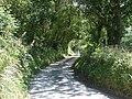 Lane to Cwm-y-Ffynnon - geograph.org.uk - 519365.jpg