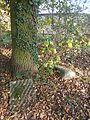 Lapidarium Kobylanka 21.jpg