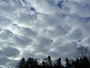 Stratocumulus illuminé depuis l'est