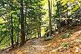 Ledges at Cuyahoga Valley National Park (10544231275).jpg