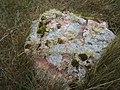 Lichen on stone - geograph.org.uk - 1525509.jpg