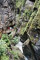 Liechtensteinklamm ravine (24893601985).jpg