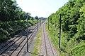 Ligne Mâcon Ambérieu près Chemin Prairie St Jean Veyle 2.jpg