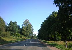 Lithuanian Road KK120.JPG