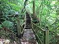 Llwybr Coed Crewil Wood Path, Carmarthenshire - geograph-5086317.jpg