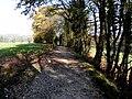 Loex, Promenade le long du Rhone - panoramio (15).jpg