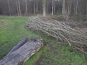 Moseley Bog - Image: Log bench at Moseley bog