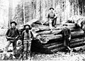 Loggers next to fallen redcedar at Dry Creek near Port Angeles, Washington, May 1889 (WASTATE 997).jpg