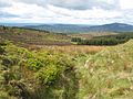 Looking west from the Clermont Pass - geograph.org.uk - 446723.jpg