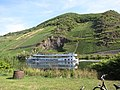Lots of vineyards along the Mosel river, and also lots of cruise ships - panoramio.jpg
