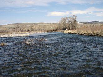 Gallatin River - Lower Gallatin River near Manhattan, Montana