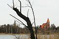 Lusowo, Lusowskie Lake.JPG