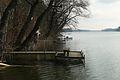 Lusowskie Lake, Lusowko (5).JPG