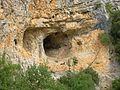 Méjannes-le-Clap abc6 Cèze bouc.jpg