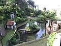 Madeira - Monte - Jardim Tropico (2093404702).jpg
