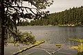 Magone Lake Shoreline-Malheur (23851763201).jpg