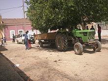 الزراعة في الجزائر 220px-Mamounia.jpg