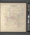 Map of City of Auburn NYPL3903581.tiff