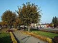 Market Square in Lubien Kujawski (2).jpg